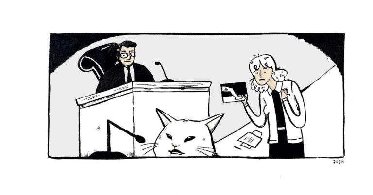 testemunha felina deborah salomao direito e animais juris